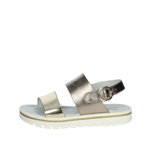Nero Giardini Shoes Sandals Platinum  P931106F