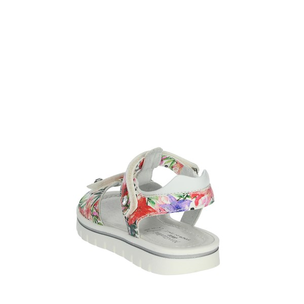 Nero Giardini Shoes Sandals Flowered P928080F