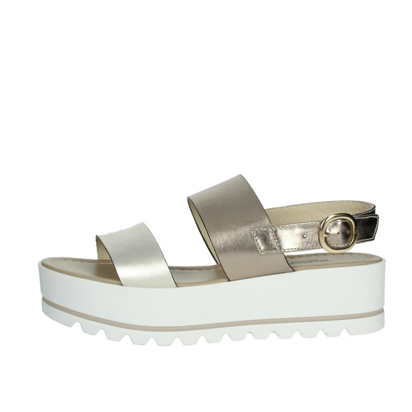 Nero Giardini Shoes Sandals Platinum  P908323D