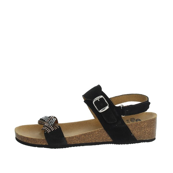 Scholl Shoes Sandals Black EVELYN SANDAL