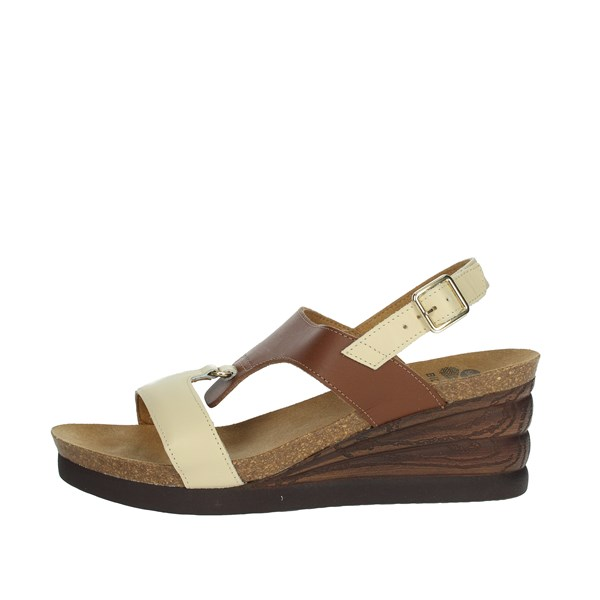Scholl Shoes Sandals Brown leather ANNAEL