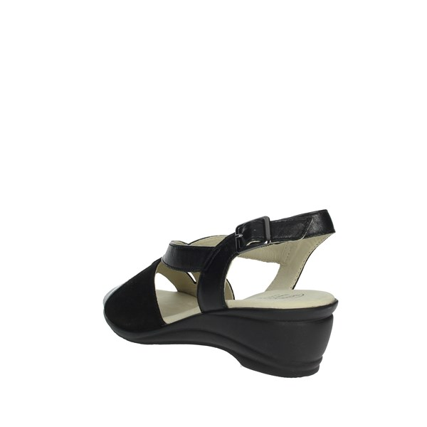 Scholl Shoes Sandals Black ROSINA