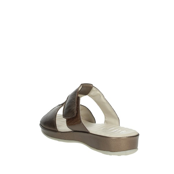 Scholl Shoes Clogs Bronze  ZELMA