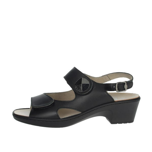 Scholl Shoes Sandals Black ARGINNIS