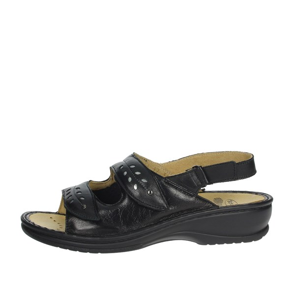 Scholl Shoes Sandals Black BERNADETTE