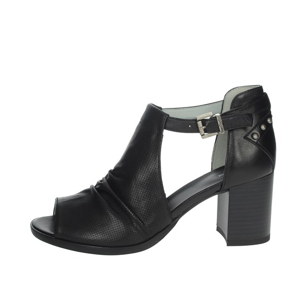 Nero Giardini Shoes Pumps Black E010225D