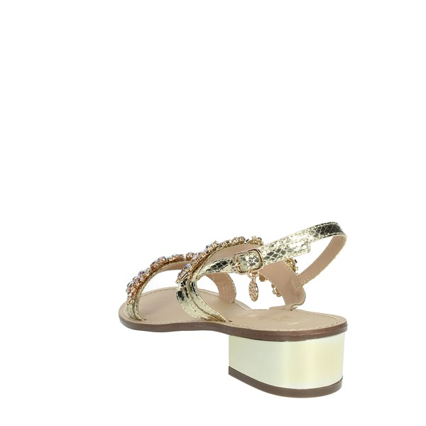 Gold & Gold Shoes Sandals Platinum  GL538