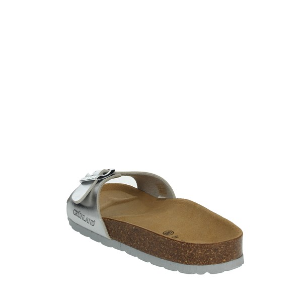 Grünland Shoes Clogs Silver CB2382-40