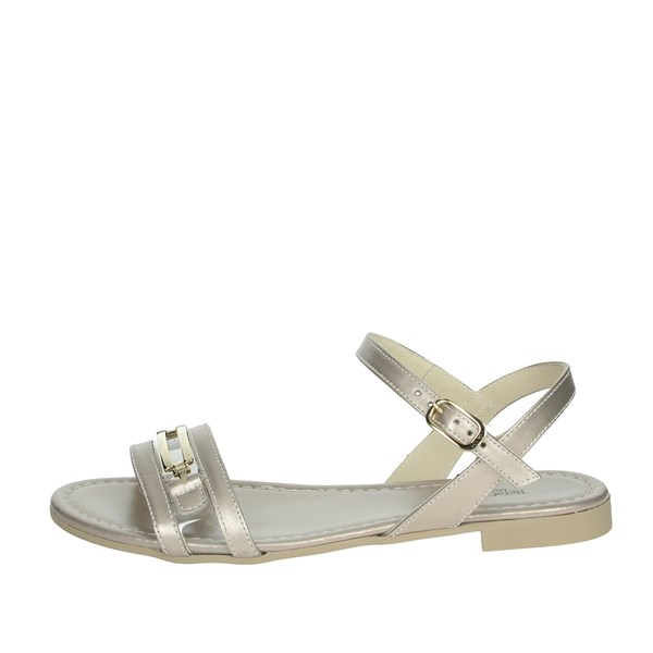 Nero Giardini Shoes Sandals Platinum  E012481D