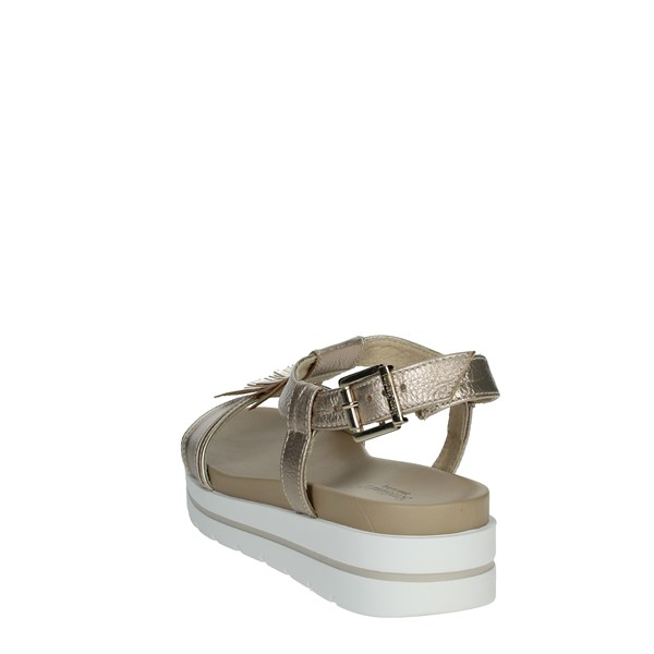 Nero Giardini Shoes Sandals Platinum  E012610D
