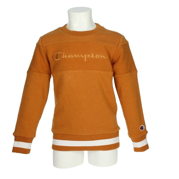 Champion Clothing Sweatshirt Mustard 305394